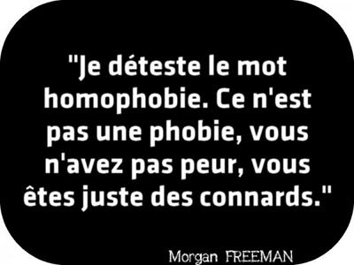 1732Homophobes